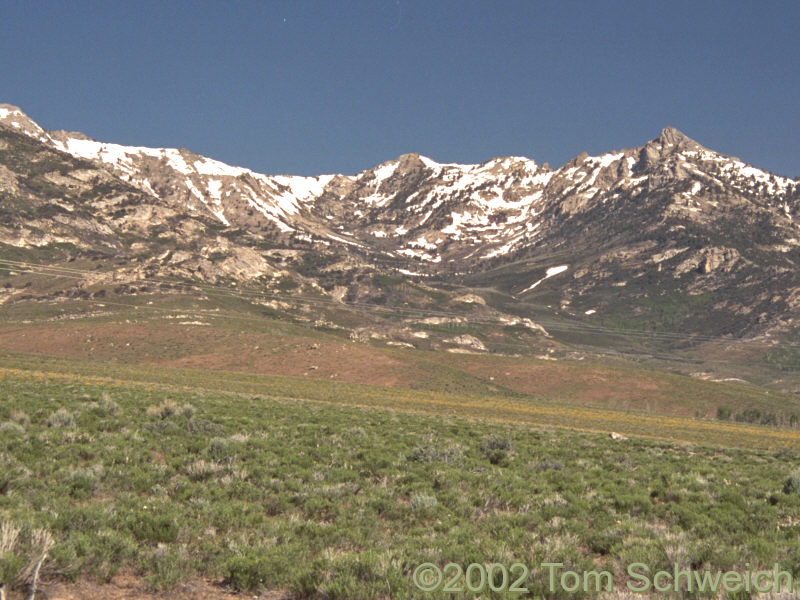 Canyon on east side of Ruby Mountains