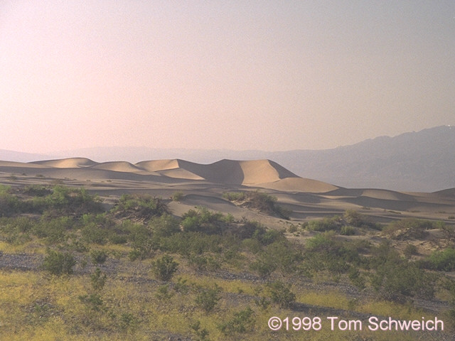 Sand dunes at Stovepipe Wells in the late afternoon.